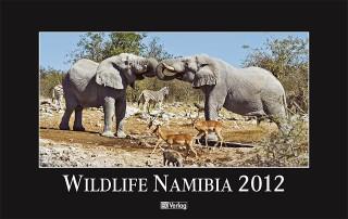 Wildlife Namibia 2012